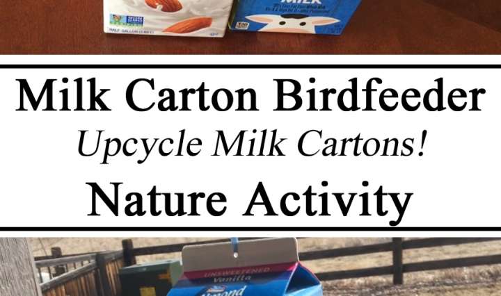 upcycle, Milk carton, Birdfeeder, diy, Nature Activity, Preschool, Toddlers, Totschool, Educational, Kindergarten, Teacher Ideas, Paper Crafts, Homeschool, Homeschooling, Birds, Activities for Kids, Caring