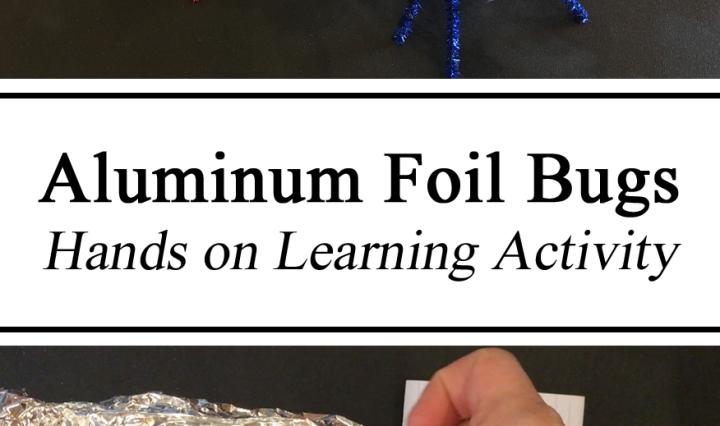 Aluminum Foil Bugs, Hands on Learning Activity, How to, Nature Play, Homeschool, Homeschooling, Ideas, Inspiration for Parents, DIY, Toddlers, Preschool, Kindergarten, Elementary, Teachers, Montessori