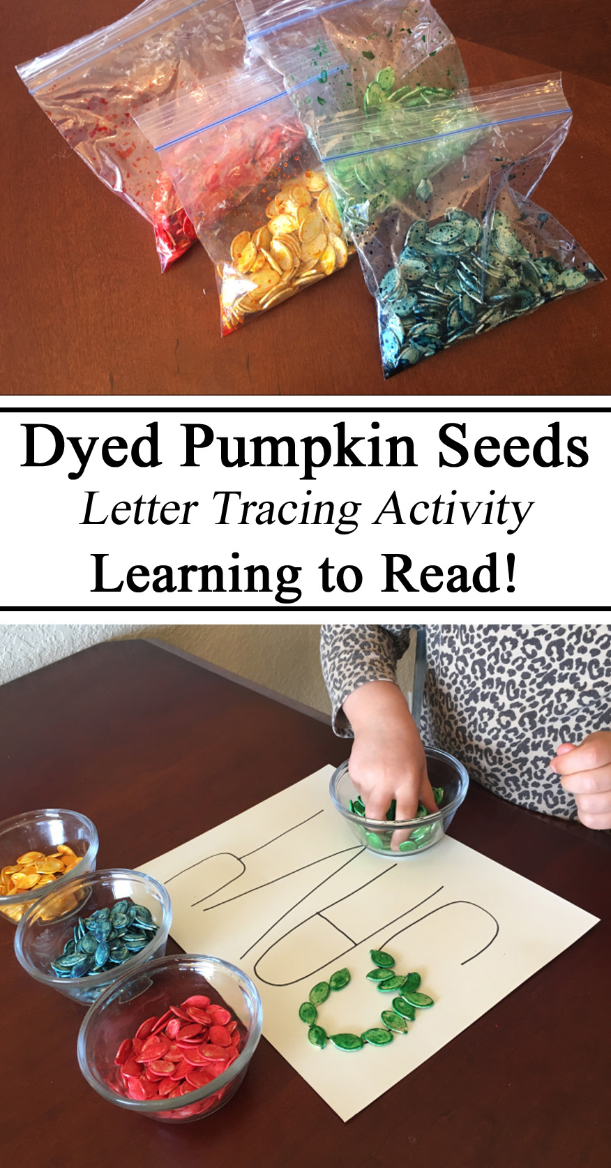Outline, Learning to Read, Spelling, Spell, Name, Preschool, Tracing Activity, Kindergarten, Homeschool, Homeschooling, Hands on Learning, Montessori, Educational, DIY, Dyed Seeds, Pumpking, Fall, Autumn, Unit, Alphabet