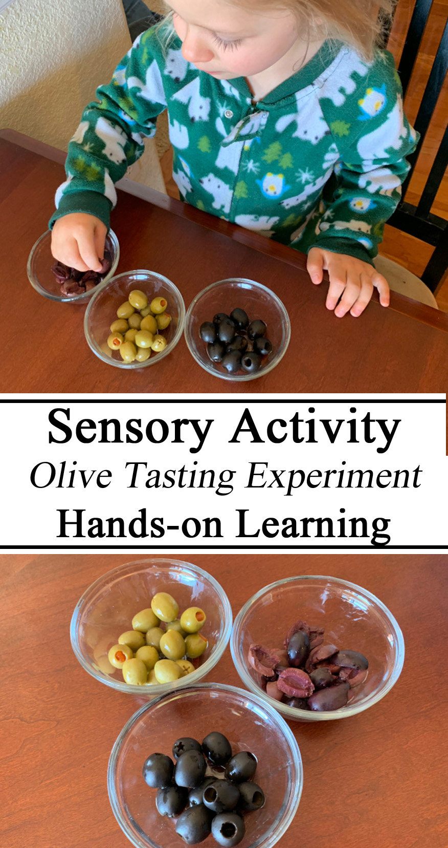 Sensory Activity, Olives, Olive Tasting, Preschool, Preschool Activities, Hands on Learning, Sensory, Israel Travel Unit
