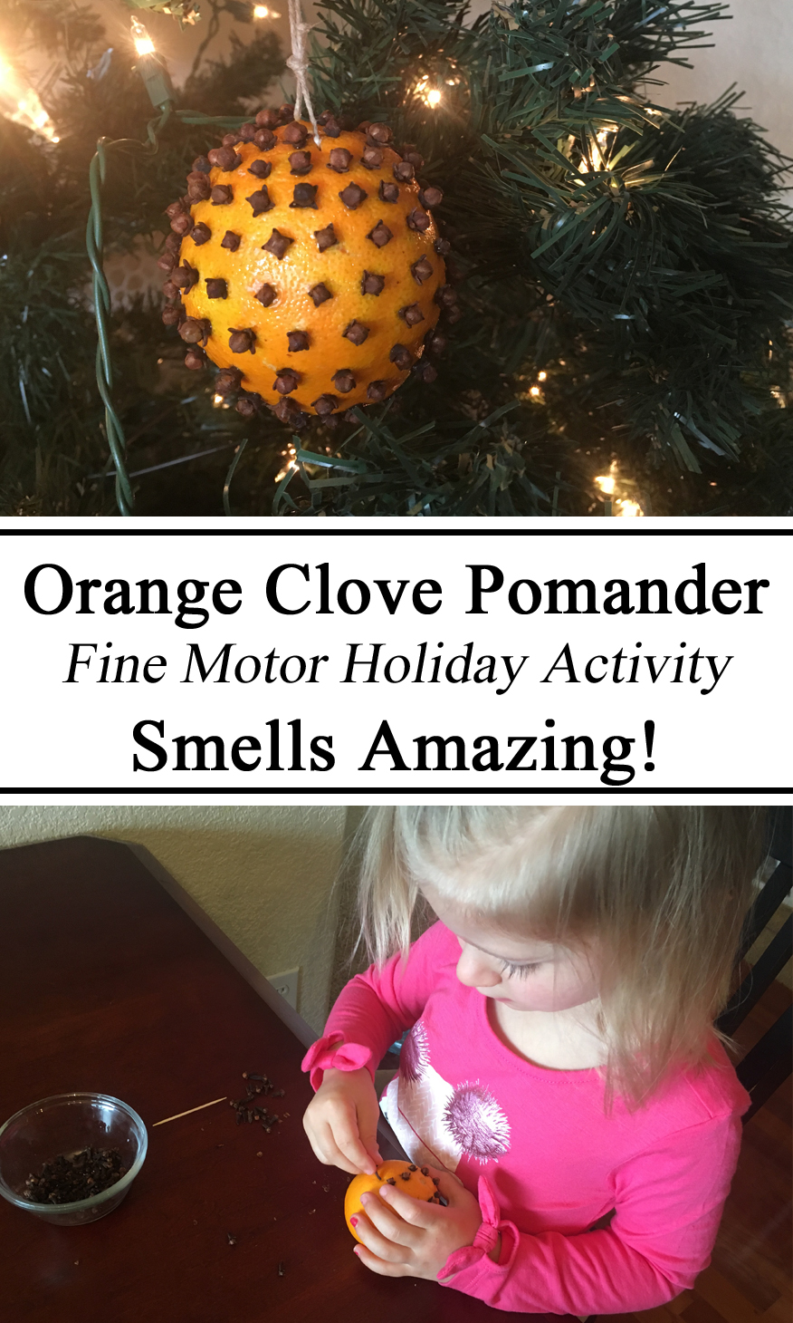 Orange Clove Pomander, Fine Motor Holiday Activity, Toddlers, Preschool, Kids, Christmas Holiday Traditions, French, Hands on Learning, Creative, Crafts, Montessori, Homeschool, Homeschooling, Hands on, Totschooling, Creative