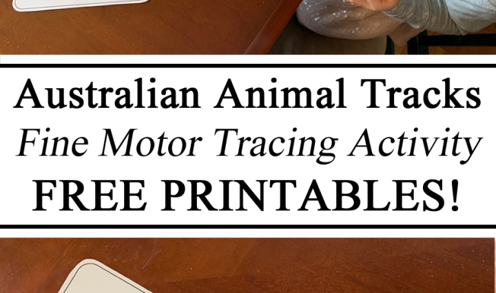 Australia Australian Day Unit Animal Tracks Fine Motor Tracing Salt Free Printables Tasmanian Devil Koala Kangaroo Crocodile Montessori Waldorf Preschool Printables FREE Download Resources Teachers Parents Culture Geography Learning Hands on