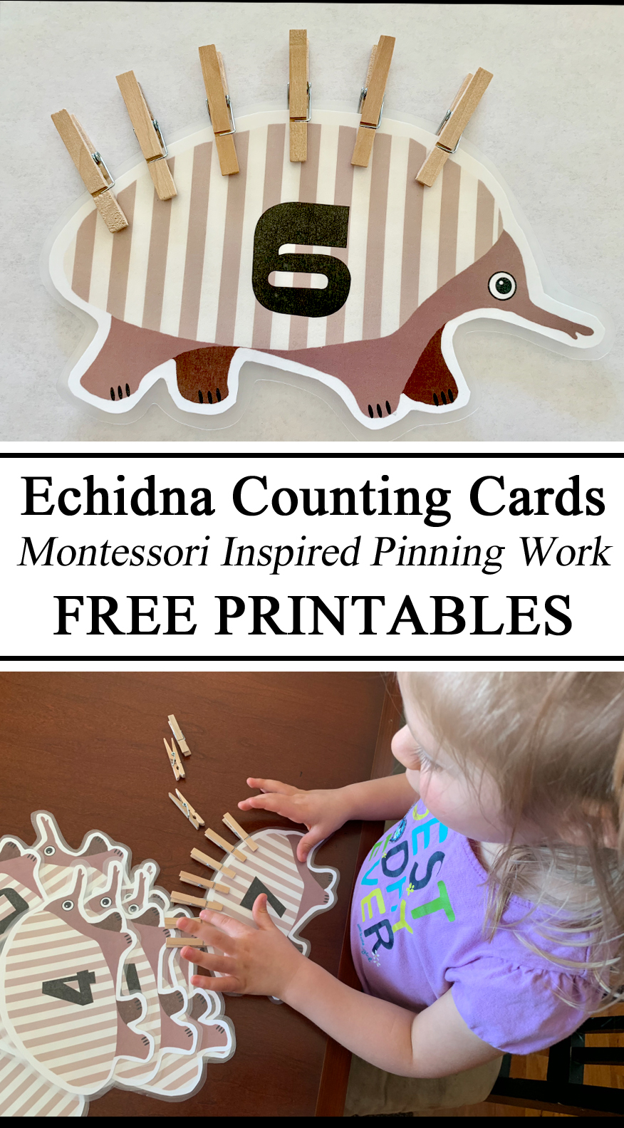FREE Download Printable Printables, Echidna Counting Cards Clothespins Pinning Work Montessori Inspired Nature Animal Crafts Preschool Preschoolers Totschool Early Childhood Education Resources for Teachers Fine Motor Skills VIsual