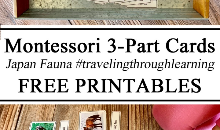 Montessori Inspired 3-part printables matching cards #travelingthroughlearning educational resources free download printables printable Learning Homeschool Homeschooling Learn Animals of the World Japanese Miniatures Waldorf STEM Preschool