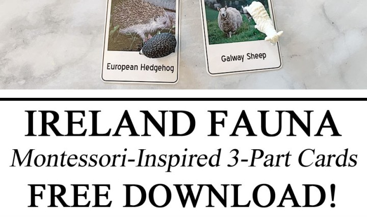 Homeschooling, Homeschool, Montessori, Inspired, Free Printables Printable, 3-Part Cards, Download, Resources, Educational, Preschool, Kindergarten, #travelingthroughlearning, Fauna, Animals of Ireland, Learning about Animals, Miniatures, Manipulatives, Hands on Learning, Unschooling, Ideas, Kindergarten, PreK