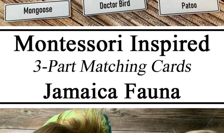 Homeschool, Homeschooling, Montessori, 3-Part, Three-Part Printables Printable FREE Matching Cards, Jamaica Fauna Jamaican Unit Study Inspired Resources, Preschool, Miniatures, Hands on Learning, Unschooling, Learning Animals of Other Countries, #travelingthroughlearning, Educational FREE, Early Years, Preschool, Kindergarten, PreK,
