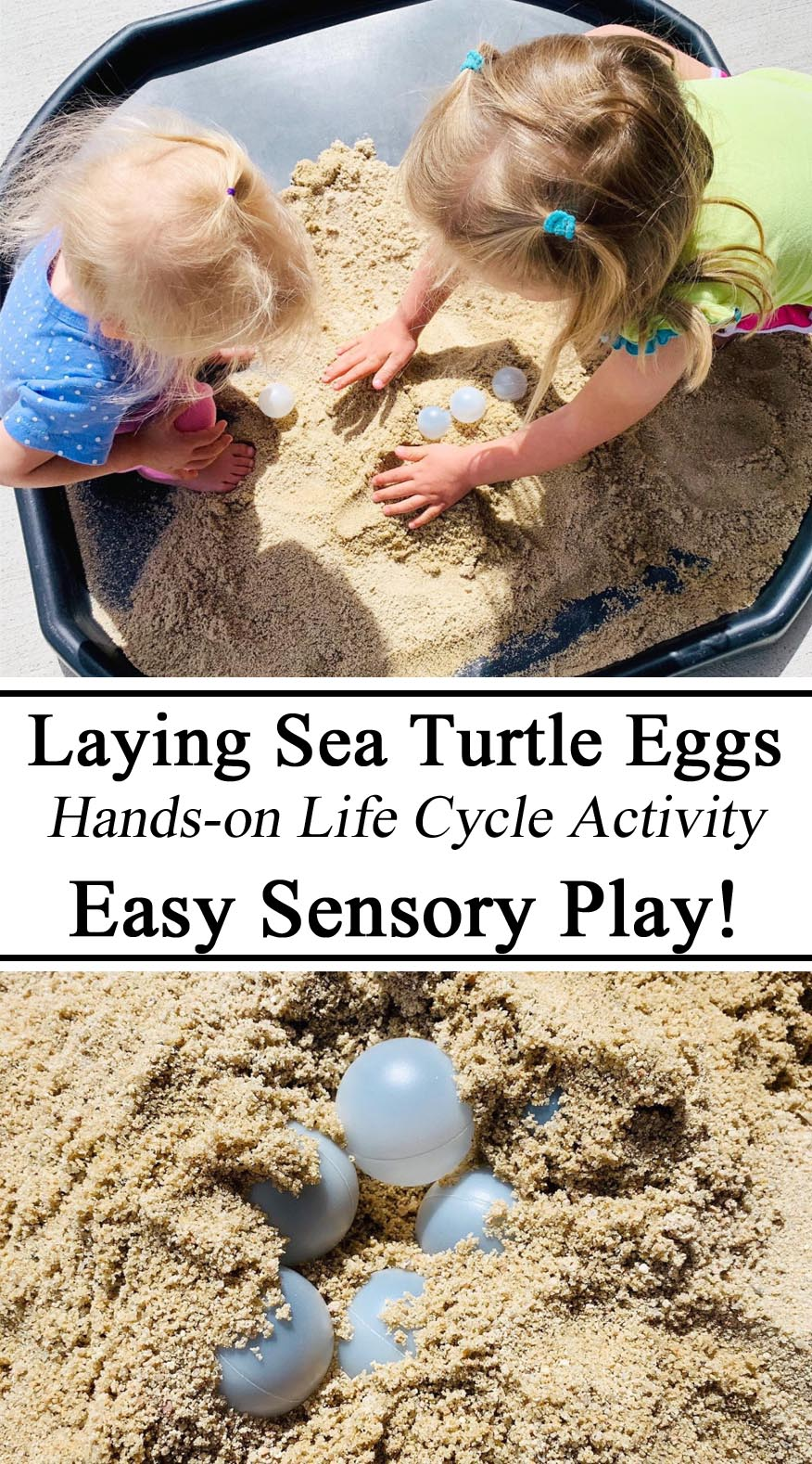 Leatherback Leather back Sea Turtle Life Cycle Eggs Sensory Play Activity Hands on Learning Montessori Inspired Waldorf Homeschool Homeschooling Tuff Tray Spot Bin Sand Ping Pong Balls, Visual Activity, Ideas Preschool Kindergarten Toddler Ideas Summer Educational Learn Jamaica Caribbean Early Years Childhood Educational