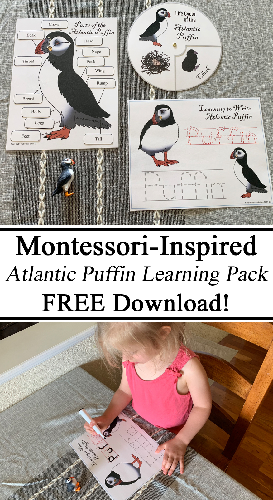 Montessori Inspired Ideas Waldorf Nature Schooling Kids Hands on Learning Life Cycle Matching Parts Learn to Write Spinner Preschool FREE Printables Download Resources PreK Kindergarten Early Childhood Education Learn Summer TPT Teachers Pay Teachers