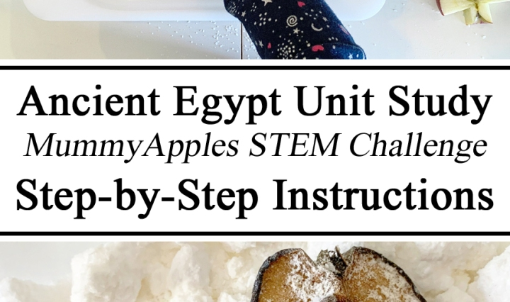 egyptian Egypt Ancient Mummification Mummy Process Apples STEM STEAM Challenge Unit Study Stuies Instructions Ideas Hands on learning Science for Kids Experiments How to Preschool Kindergarten PreK Ideas Inspiration