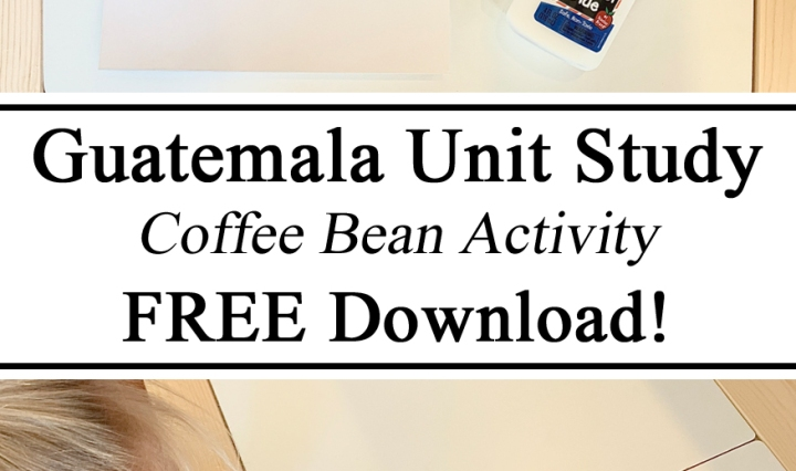 Homeschool, Homeschooling, Guatemala Guatemalan Unit Study Studies Coffee Bean Outline Activity Free Download Hands on Learning Ideas Inspiration How to Geography for Kids Preschool Kindergarten Inspiration Teachers Parents Educators Learning Learn